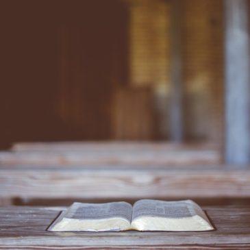 Lekcja z 1Piotra 1:21-2:3 – Marcin Mucha